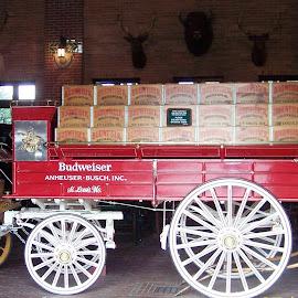 Beer Wagon by Sandy Stevens Krassinger - Transportation Other ( carts, beer cases, wheels, wagon, transportation,  )