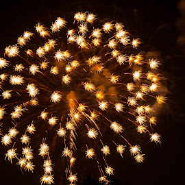 Golden Sparklers by Pat Lasley - Abstract Fire & Fireworks ( fireworks display, fourth of july, celebrations, fireworks, harrison ohio )