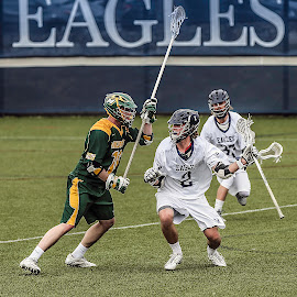 Noah Dewey by Elk Baiter - Sports & Fitness Lacrosse ( green terror, university of mary washington, umw, eagles, mcdaniel college, lacrosse )
