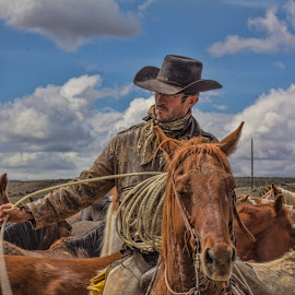 by Bill Dickson - People Street & Candids ( cowboy, roundup, male, horses, horse drive )
