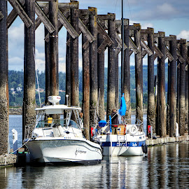At dock  by Todd Reynolds - Transportation Boats