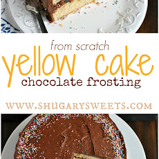 Yellow Cake with Double Fudge Frosting