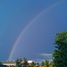 Rainbow by Myra Brizendine Wilson - Landscapes Weather ( rainbow over buildings, blue, colors, buildings, rainbow )