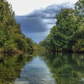 River by Mario Horvat - Instagram & Mobile iPhone ( reflection, sky, green, trees, ljubljanica, river )