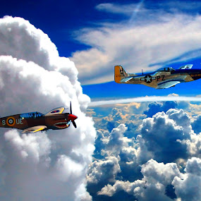 WWII P-40 CURTISS & P-51 MUSTANG IN THE HEAVENS by Gerry Slabaugh - Transportation Airplanes ( clouds, fighter plane, wwii, warhawk, airplane, p-40 curtiss, p-51 mustang, fighter, heavens,  )