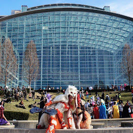 I call this Cosplay Hill at the Gaylord National Harbor Katsucon 2017 by Brandi  Rhone  - Artistic Objects Clothing & Accessories