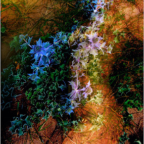 Body in the undergrowth by Stephen Hooton - Digital Art Things ( glamour, chantel, people )