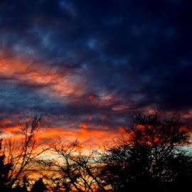 Sunset by Edie Delzer - Landscapes Sunsets & Sunrises