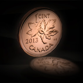 The Last Canadian Penny  by Emily Fnm3d - Illustration Business ( north american, reflection, currencies, copper, change, retired, canadian culture, business, detailed render, currency, black background, money, dramatic, shiny, isolated, minted, canada, news, coin, high resolution, mint, maple leaf, 3d, discontinued, penny )
