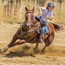 Young Barrel Racer by Joe Saladino - Sports & Fitness Other Sports ( girl, barrel race, horse, race, competition )