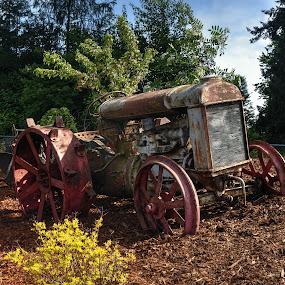 Fordson Farm Tractor by Dennis McClintock - Transportation Other ( old equipment, farm equipment, man-made contest, transportation,  )