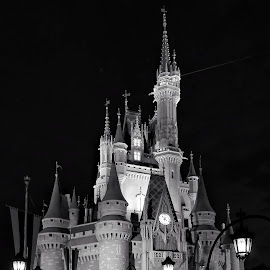 Cinderella Castle by Rus Lan - Black & White Buildings & Architecture ( disney world, mobile photos, black and white, architecture, night photography )