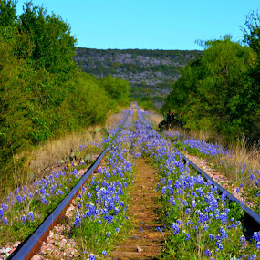 Blue Rails by Rhonda Kay - Transportation Railway Tracks