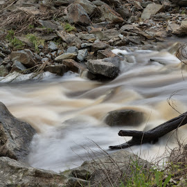 torrens by Ian Chase - Nature Up Close Water ( water, gorge, flood, river )