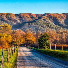 by Carol Ward - Landscapes Mountains & Hills ( tn, mountains, fall colors, autumn )
