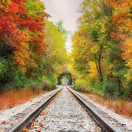 Fall time on the trax by Brian Hollars - Transportation Railway Tracks ( rail railroad tracks fall color leaves )