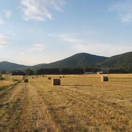 Hay bales by Davor Štimac - Landscapes Mountains & Hills