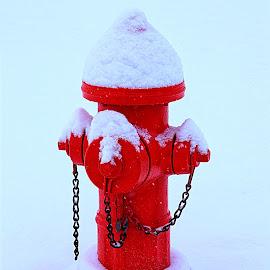 Always RED E by Rob Bradshaw - Artistic Objects Other Objects ( water, always red e, red, fire hydrant, snow, emergency, fire )