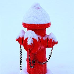White Christmas 8.jpg