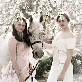 Spring beauty by Glenys Lilley - People Fashion ( girls, horse, beauty, arabian )