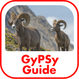 Jasper National Park GyPSy Tour For PC / Windows 7/8/10 / Mac – Free Download