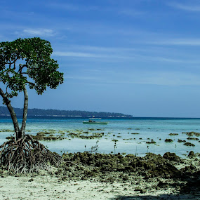 when blue sky meet blue water  by Samrat Sam - Landscapes Beaches (  )