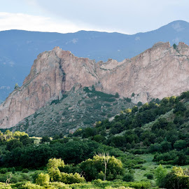 Garden of the Gods by Deborah Lucia - Landscapes Mountains & Hills ( mountains, bushes, green, colorado, trees )