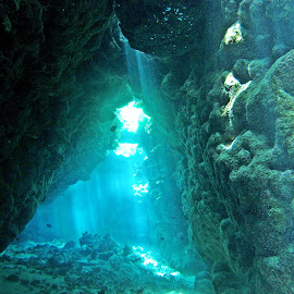 cave diving by AB Rossouw - Nature Up Close Water ( water, dive., scuba, light trails, sea, cave )