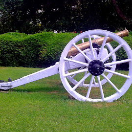 Cannon  by Asif Bora - Instagram & Mobile Other