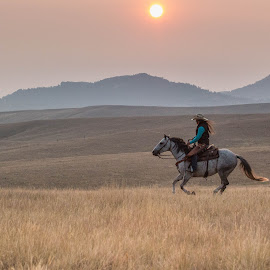 Smokey Sunset Gallop by Erin Schwartzkopf - Animals Horses ( western life, mountain, horse, cowgirl, wyoming life )