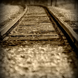 The Long Haul by A.j. Amos - Landscapes Travel ( railway, black and white, railroad, solitude, scenery )