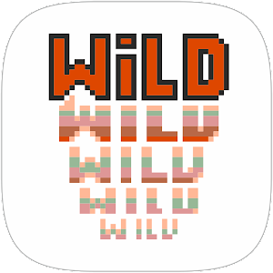 Download Video Poker Deuces Wild For PC Windows and Mac