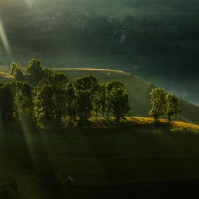 by Flaviu Negru - Landscapes Mountains & Hills (  )