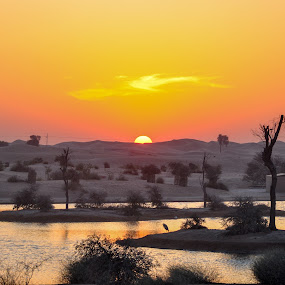 Sunset at Al Qudra Lake by Mehul V - Landscapes Sunsets & Sunrises ( sunset, lans, desert, lake, dubai )