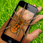 Spider On Hand. Scare Prank Icon