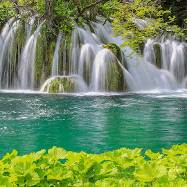 Plitvice by Miro Zalokar - Landscapes Waterscapes