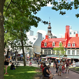 Old Quebec city, a place for readers by Réal Michaud - City,  Street & Park  Historic Districts ( old house, treasure street, red, bench, church, tourists, book, summer, historic district, parc, city, street photography )