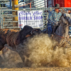 Ornery Bull by Twin Wranglers Baker - Sports & Fitness Rodeo/Bull Riding (  )