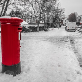 Letterbox in the snow by Wendy Richards - City,  Street & Park  Neighborhoods ( red, letterbox, street, snow, roads,  )