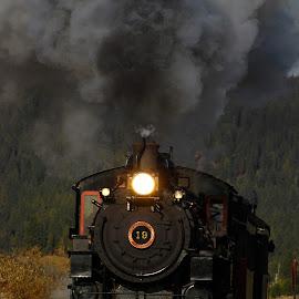 by Barbara Schoenfeld - Transportation Trains (  )