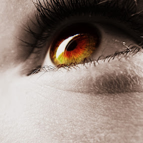 Golden Eye by Charlotte Swann - People Body Parts ( colourful, gold, golden, eye )
