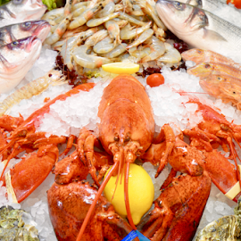 The Main Course by Dave Feldkamp - Food & Drink Cooking & Baking ( shrimp, fish, lobster, fish market, shell fish,  )