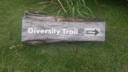 Diversity TRAIL
