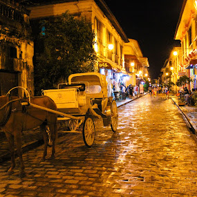 calesa vigan heritage by Diofel Dagandan - City,  Street & Park  Historic Districts