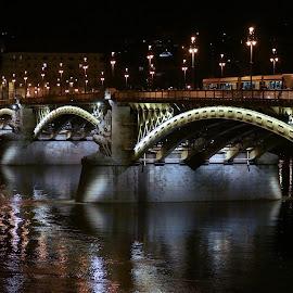 Budapest, Margit Bridge by Elena Lashneva - City,  Street & Park  Night ( budapest, margit bridge, night )