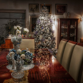 by Marina Danic - Public Holidays Christmas (  )