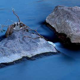 Water and Stone by Ty Williams - Nature Up Close Rock & Stone