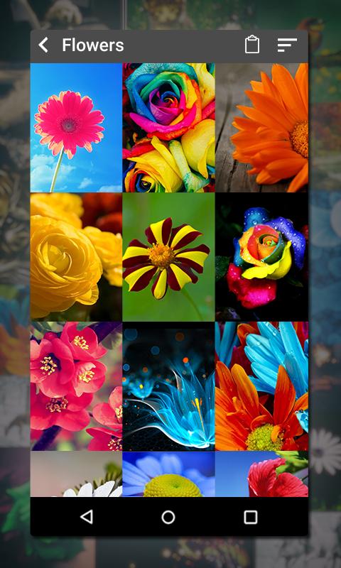 Gallery Screenshot 8
