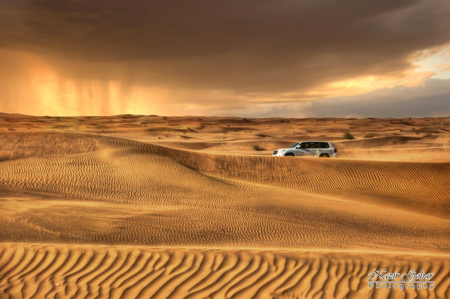 Desert Storm by Nazir Gohar - Landscapes Deserts ( clouds, sand, landscap, desert, jeep, beautiful, sorm, gold, nikon d90, photography, desert storm cloud,  )
