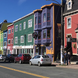 Jelly Beans of St Sjohns by Victor Kalimuthu - Buildings & Architecture Homes ( newfoundland, colors, st johns, jelly beans, townhouse )
